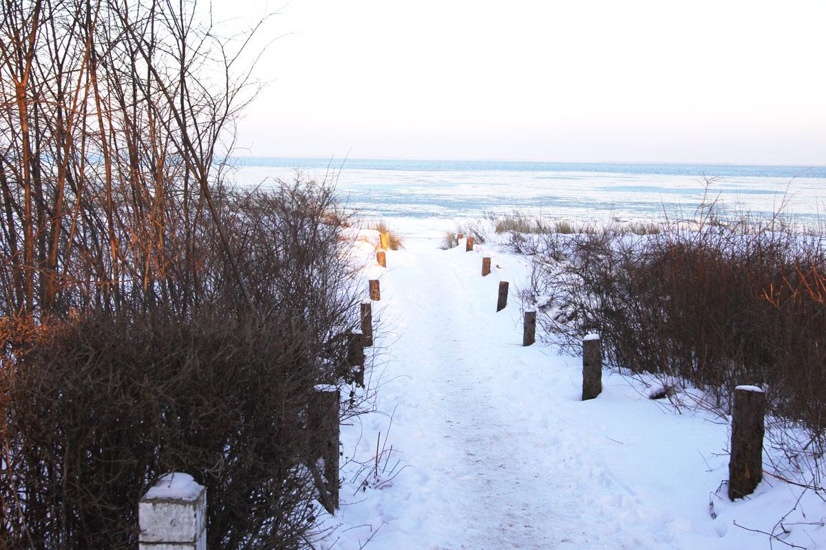 Vital durch den Winter