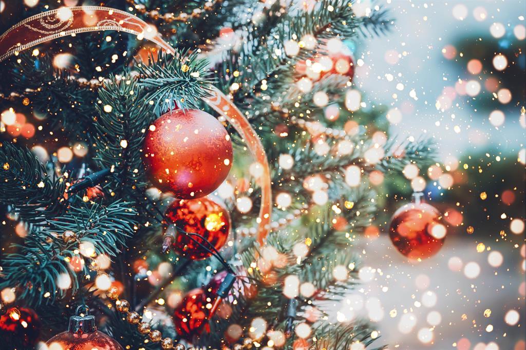 Seehotel Heidehof: Weihnachten am Tollensesee
