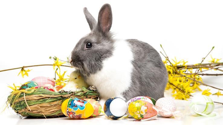 Ostern im Alstertal
