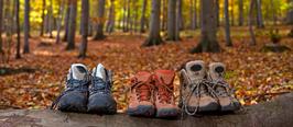 Herbstwanderwoche - 14.  bis 19.  Oktober 2017