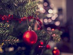 Angebot - Weihnachtliches Usedom 22.  bis 27.  Dezember